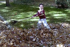 kid raking leaves
