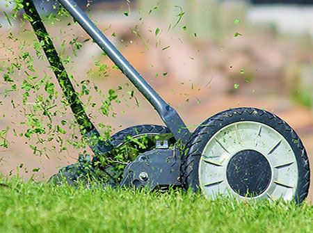 A push lawn mower sprays up green grass