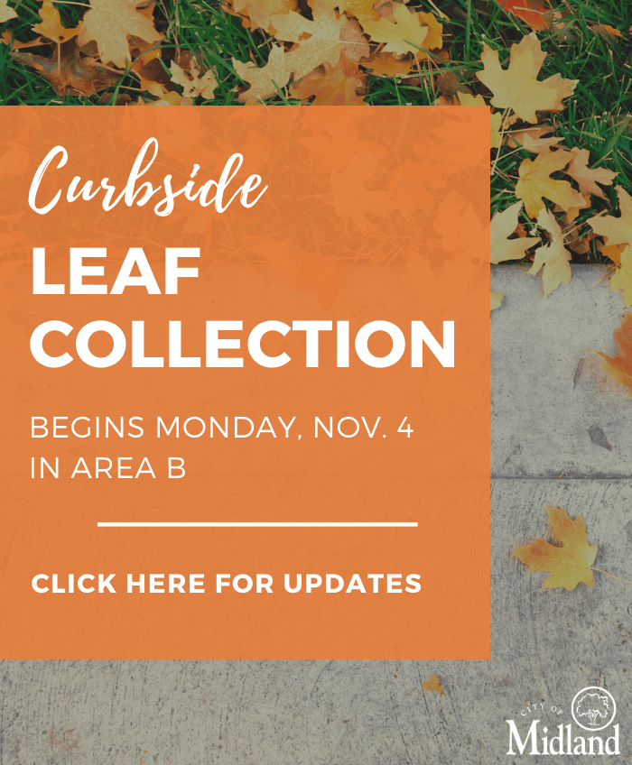 Curbside Leaf Collection
