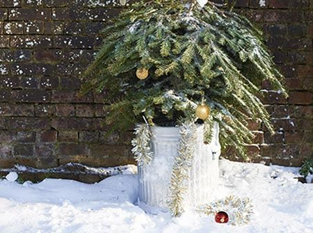 A green pine tree sits in a silver trash can upside down on a white snow bank