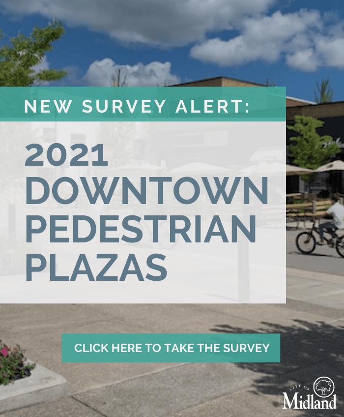 Downtown Plaza Survey