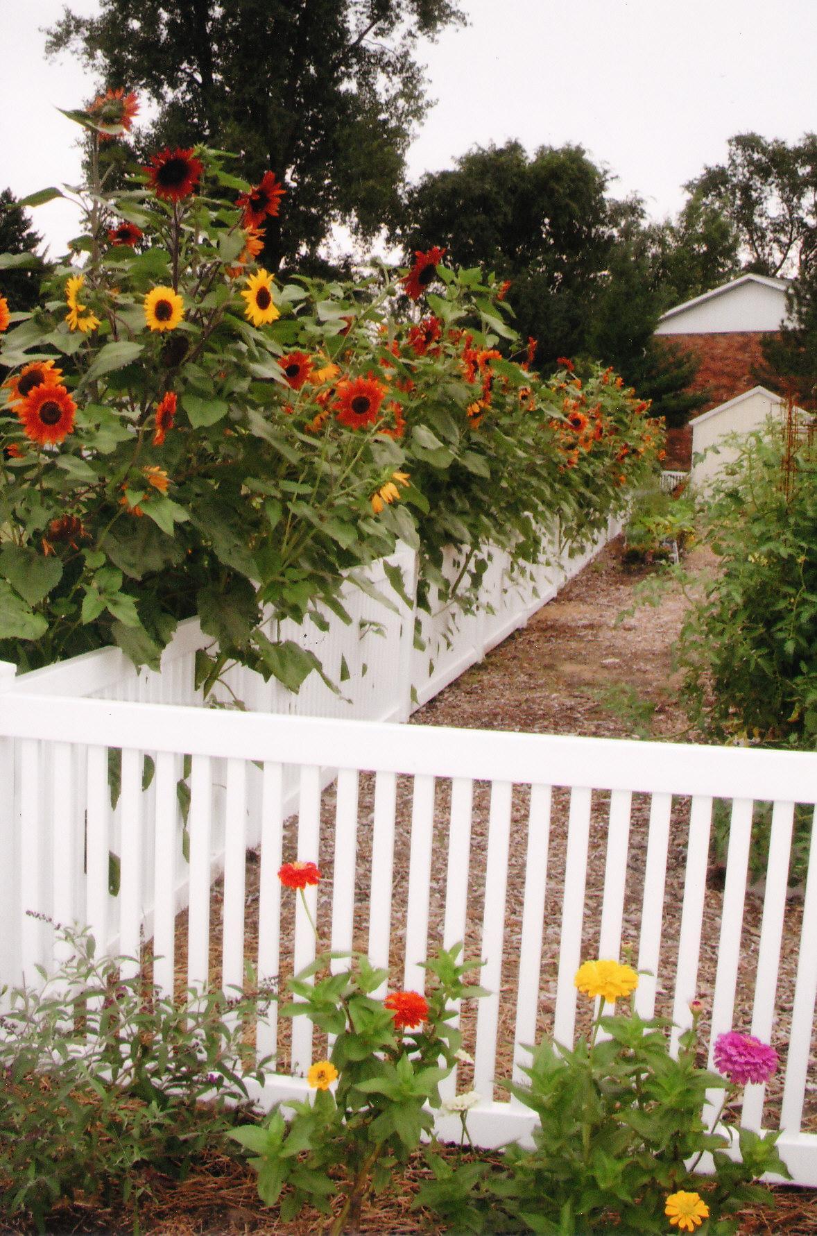 Community Garden Midland MI Official Website